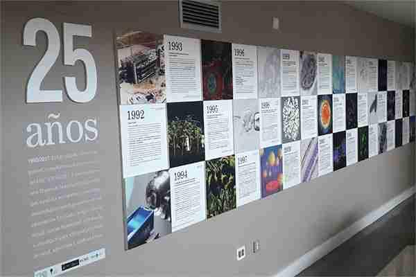 Mural de Aniversario